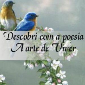 Descobri com a  poesia A arte de Viver - Maria Luiza de Souza Galvão