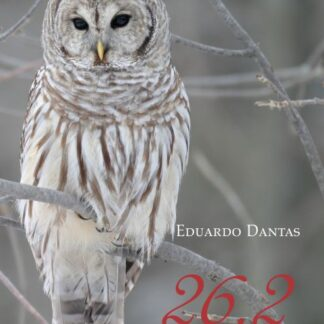 26 de Fevereiro - Eduardo Dantas