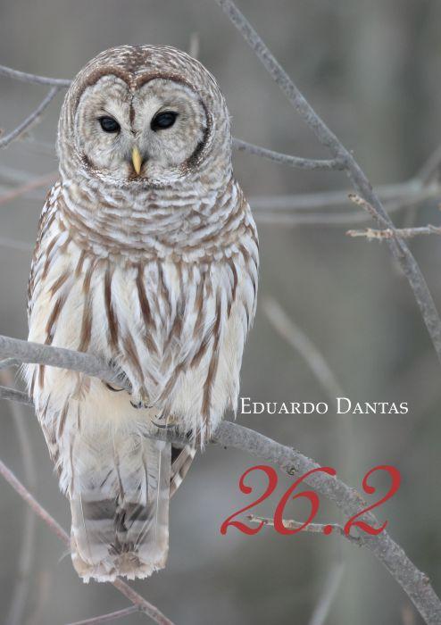 26 de Fevereiro – Eduardo Dantas